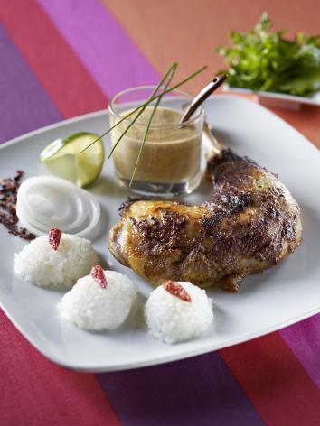 recette poulet grill tandoori facile. Black Bedroom Furniture Sets. Home Design Ideas
